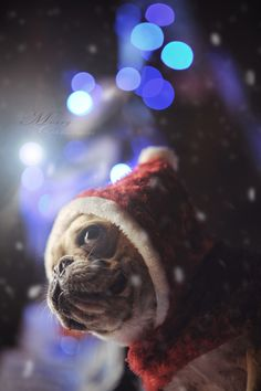 Merry Christmas by Lu Donfer, via 500px