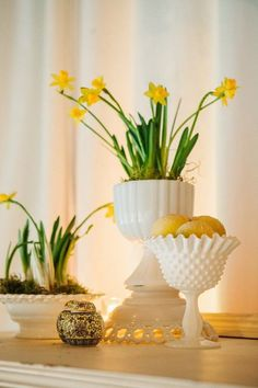 mini daffodils in milk glass from Vintage Ambiance Antique Glassware, Antique Lamps, Flower Room Decor, Apple Coffee Cakes, Art Deco Lamps, Imperial Glass, Vintage Planters, White Vases, Glass Collection