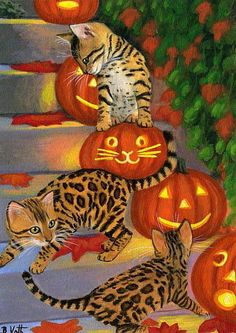 Bengal kittens cats Halloween jack o lanterns pumpkins original aceo painting  #Realism Bridget Voth (Artist). Ebay ID star-filled-sky