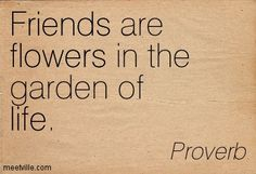friends-are-flowers-in-the-garden-of-life-flower-quote.jpg (403×275)