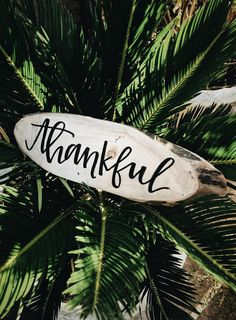 Gratitude is the action of being thankful, and it's something that can be practiced all year round. benefits of gratitude, how to destress, mental health awareness Jessica Castro, Learn Yoga, Infj Personality, Practice Gratitude, Showing Gratitude, Happy New Year 2019, Secret To Success, Yoga For Weight Loss, Yoga Benefits