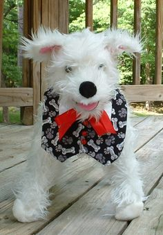 stuffed version of Char in a silly vest - stumbled across this on Etsy