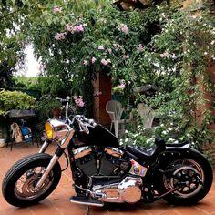 Softail Bobber, Harley Bobber, Harley Softail, Bobber Chopper, Custom Bobber, Custom Harleys, Custom Bikes, Brat Cafe, Japan Style