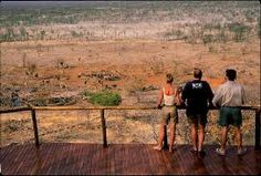 Ongava reserve form the bar. Private Games, Game Reserve, Tree Tops, Black House, Grand Canyon, National Parks, Africa, Camping, Places
