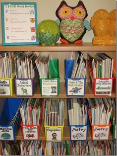 This is a perfect example on how to keep outside resources organized. Books are carefully organized by subject/category for students.    Element IV.4:  Teachers organize and utilize available resources (e.g., physical space, time, people, technology) to create a safe and productive learning environment.