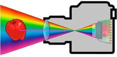 Color of Light-Camera Mechanics.jpg