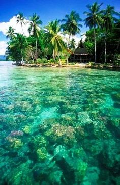 Morovo Lagoon, Solomon Islands, South Pacific