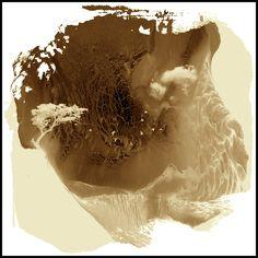 TRAUMLANDSCHAFT – Das innere des Bewusstseins, wo Erinnerungen verwahrt werden. Seher können bewusst in ihre eigene Traumlandschaft eindringen. Amaurotiker erhaschen nur im Schlaf kurze Einblicke. www.facebook.com/theboneseason.de