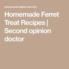 Homemade Ferret Treat Recipes   Second opinion doctor