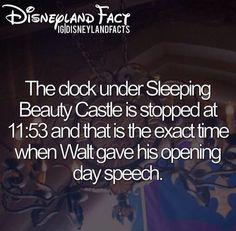 The clock under Sleeping Beauty's castle