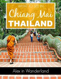 A few tips for great things to do in Chiang Mai and one tourist activity that should be avoided | Alex in Wanderland
