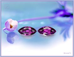 Eight carat Pair of Purple Amaranthine Garnets from Mozambique,- rich and intense in color, sharply brilliant in luster.