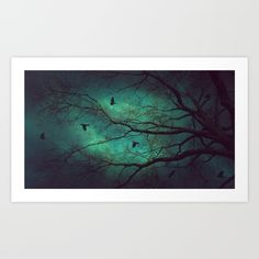 Where Dusk Meets Dawn II Art Print  trees, tree silhouettes, night sky, teal sky