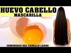 La MEJOR MASCARILLA EXÓTICA para conseguir cabello largo y detener la caída ¡efecto increible! - YouTube