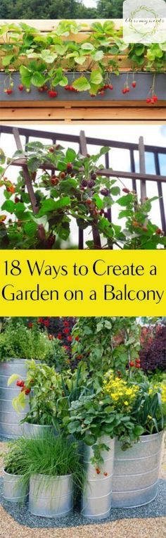 Gardening, How to Garden in Small Spaces, Balcony Gardens, Small Space Gardening Tips, How to Grow a Garden on a Balcony, Gardening 101, Gardening Tips and Tricks, Gardening In Apartments, Apartment Gardening, Popular Pin