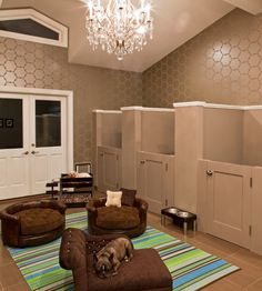 Dog Room - dream home...Lol, I don't have any dogs, but I thought this was too funny not to pin