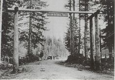 In 1908 after the establishment of the Oregon National Forest, later (1924) to be named Mt Hood National Forest, a gateway was established welcoming visitors to the area. This gateway was built across the old road at Zigzag, in front of the Zigzag Ranger Station.