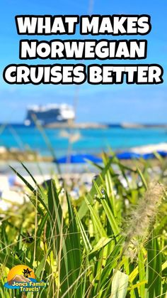 Norwegian Cruise Line is a popular cruise for families. They offer a lot of amazing amenities that other cruise lines do not offer. Check out our list of what makes them better! #norwegiancruiseline #norwegiancruises #familycruises Cruise Checklist, Packing List For Cruise, Cruise Tips, Cruise Travel, Cruise Vacation, Vacation Trips, Best Vacation Destinations, Best Vacation Spots, Family Cruise