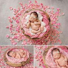Newborn Photographer Seattle | Rachel 10 days new » Maternity Newborn Baby Photographer Seattle
