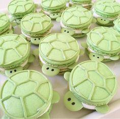 Turtle macarons