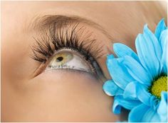 It looks like magic but it's real. Short, lifeless lashes and costly extensions are the bane of many women's lives.The LiLash formula includes fortifying and conditioning ingredients to help improve the lash follicles. This helps to enhance the natural beauty of the eye lashes. The Lilash eye growth stimulator serum assists in raising the hair follicles in a natural method and does not cause irritation to your eyes. In addition, the serum is purified.