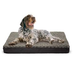 Furhaven Sm Faux Sheepskin / Suede Dlx Orthopedic Pet Bed Mat Cream/Clay, Gray