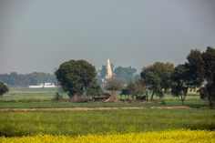 Indian countryside, Jattari, India