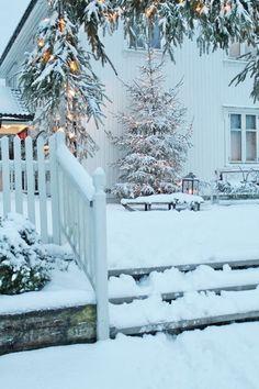 Christmas Time in Snow Winter Szenen, Winter Love, Winter Magic, Winter Christmas, Norway Christmas, Winter White, Christmas Time, Merry Christmas, Elegant Christmas