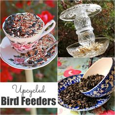 32 Easy Homemade Bird Feeders