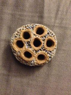 New bead