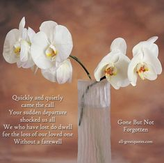 loss of a loved one quotes | shocked us all We who have lost do dwell for the loss of our loved one ...