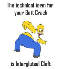 The technical term for your butt crack is 'intergluteal cleft'. Now you know. :D #anatomy