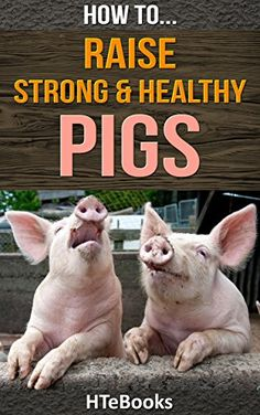 FREE TODAY    How To Raise Strong & Healthy Pigs: Simple Guide For Raising Super Pigs (How To eBooks Book 42) - Kindle edition by HTeBooks. Professional & Technical Kindle eBooks @ Amazon.com. Pig Farming, Backyard Farming, Chickens Backyard, Farming Ideas, Raising Farm Animals, Raising Chickens, Animals And Pets, Pig Pen, Future Farms