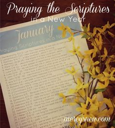 FREE Printable Scripture Prayer Calendar for January! Join me in praying the Scriptures in the New Year!