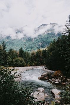 Beautiful mountains covered in clouds and mist with forests and river adventure and wanderlust travel