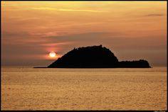 Gallinara Island (Alassio - Savona)