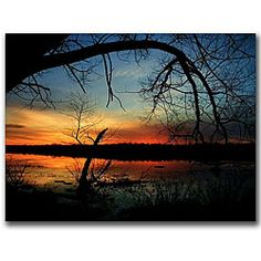 This ready to hang, gallery-wrapped art piece features a photograph a sunset over a lake. Mitch (aka CATeyes) Catanzaro is a freelance photographer. He has sold thousands of images to a wide variety o