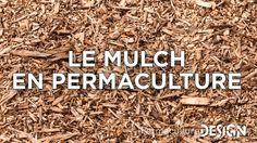 Le mulch est une appellation un peu mystérieuse pour certains d'entre vous…