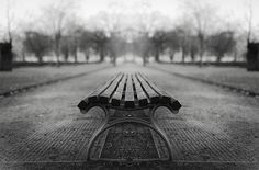 bench by Malte Kuchta on 500px