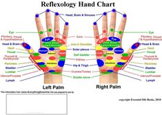 Press Your Forefinger For 60 Seconds... This Trick Has An Amazing Effect On The Organs! food share health healthy living news good to know viral reflexology. body