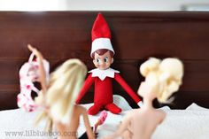r-rated and adult funny themed elf on a shelf (we don't all have kids, ya know!)