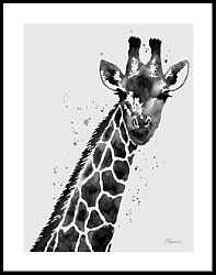 Giraffe In Black And White Framed Print Stretched Canvas Prints, Framed Prints, Giraffe Nursery, Green Animals, Black And White Aesthetic, Black And White Canvas, Animal Design, Picture Wall, Fine Art America