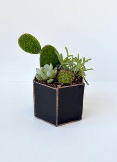 Black and Copper Geometric Terrarium Kit