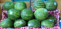 Fresh Watermelons for Summer Get-Togethers.