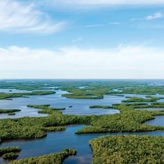 An aerial view of Florida's Everglades National Park: million acres unlike any other national treasure Everglades Miami, Everglades National Park Florida, Visit Florida, Florida Travel, South Florida, Nationalparks Usa, Park Pictures, Beach Pictures, Sea To Shining Sea