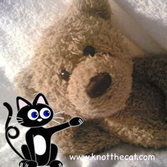 Knot's own favourite bear ! Add a Knot or Knot friend to your bear photos and join in the fun ! Download your Knot the Cat photo fun app today. Available now on the AppStore, GooglePlay store or through Knot's website www.knotthecat.com ‪#‎bear‬ ‪#‎knotthecat‬ ‪#‎friend‬ ‪#‎friends‬ ‪#‎picoftheday‬ ‪#‎cat‬ ‪#‎dog‬ ‪#‎monkey‬ ‪#‎rabbit‬ ‪#‎hamster‬ ‪#‎photofunapp‬ ‪#‎photofun‬ ‪#‎photo‬ ‪#‎fun‬ ‪#‎app‬ ‪#‎android‬ ‪#‎iOS‬ ‪#‎appstore‬ ‪#‎googleplaystore‬
