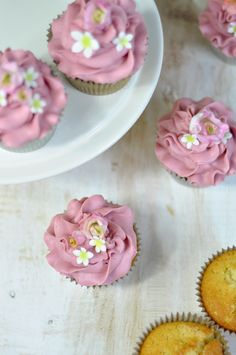Cupcakes de vainilla y frutos del bosque
