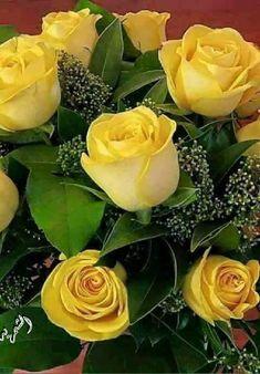 Beautiful yellow roses. :-*
