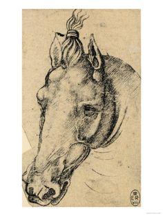 Leonardos Horse Worksheets - Kiddy Math