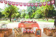 festa infantil picnic mel mai portugal inspire-7